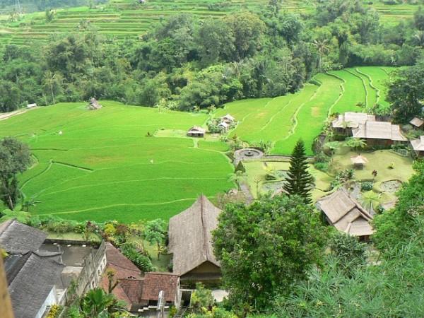 السياحة في اندونيسيا - رحلتي الى اندونيسيا