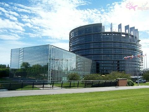 البرلمان الأوروبي فرنسا