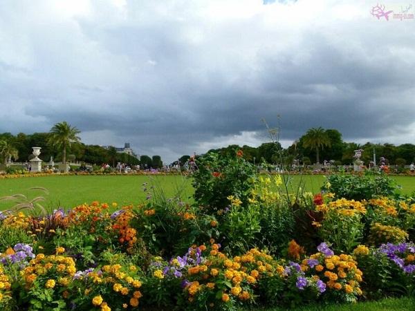 حديقة قصر دو لوكسمبورغ