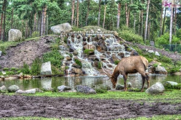 حديقة الحيوان الوطنية واشنطن