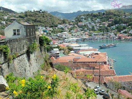 شراء جنسية دومينيكا