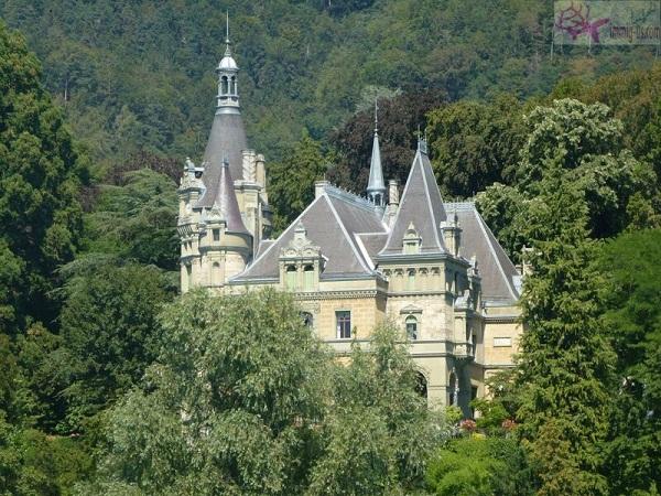 قلعة هونيغ