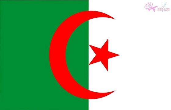 سفارة الجزائر بالقاهرة