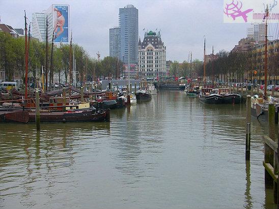 نظرة على السياحة في روتردام