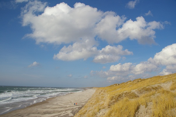 شواطئ سكاجين