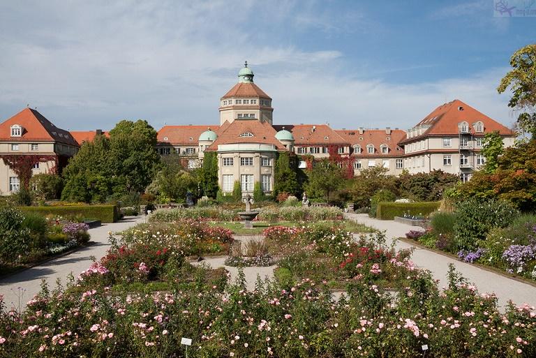 حديقة النباتات في ميونخ