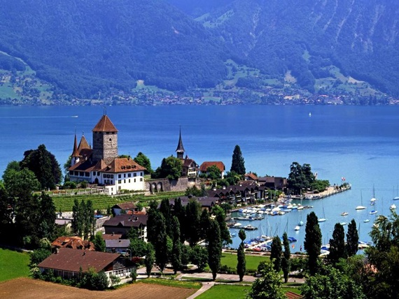 الطبيعة الصافية في بحيرة ثون السويسرية