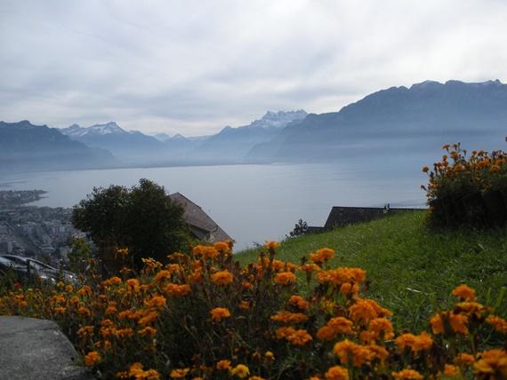 فيفي سويسرا