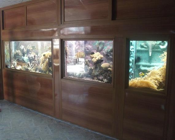 متحف الأحياء المائية فى مدينة الأسكندرية