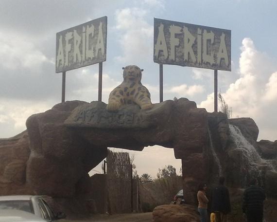 متعة حقيقة فى افريكا سفارى بارك