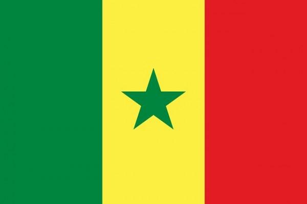 سفارة السنغال بالقاهرة | عنوان | تليفون | فاكس
