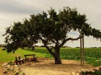 سياحة قبرص