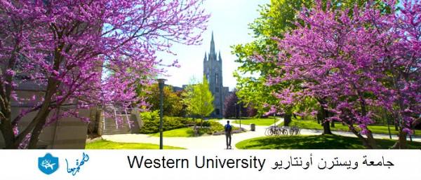 جامعة ويسترن أونتاريو