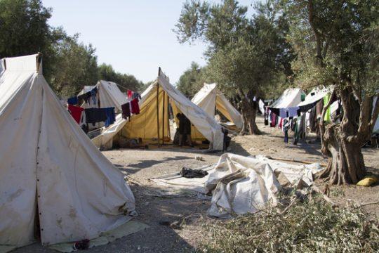 منح اللجوء في اليونان لـ 800