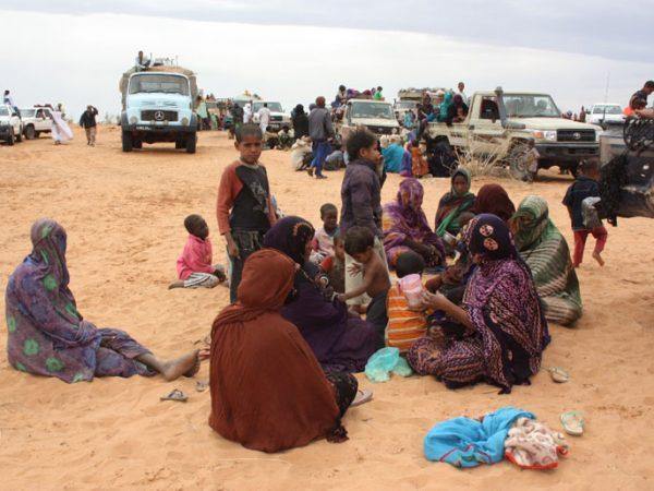 إعادة اللاجئين الماليين من موريتانيا