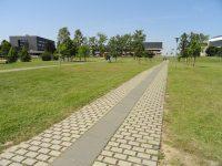 طرق الحصول على قبول للدراسة في المانيا – ملف كامل