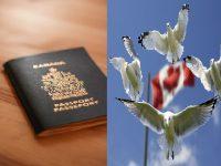 شروط الحصول على الجنسية الكندية .. 6 شروط أساسية