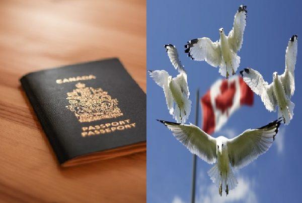شروط الحصول على الجنسية الكندية