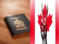 اسهل طريقة للحصول على الجواز الكندي