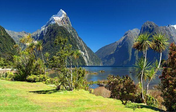 الطبيعة في نيوزيلندا