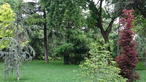 حديقة الحرية اسطنبول | الفعاليات والأنشطة | الفنادق القريبة