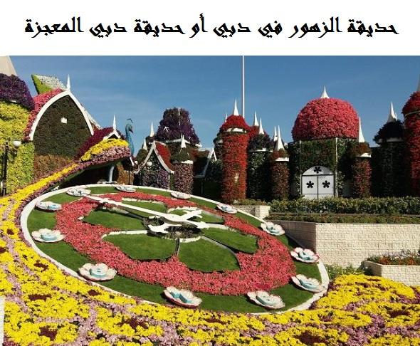 Photo of حديقة الزهور دبي ميراكل جاردن | الأنشطة السياحية | الفنادق والمطاعم القريبة
