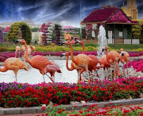حديقة الورود مدينة دبي