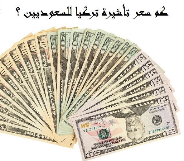 صورة سعر تأشيرة تركيا للسعوديين ؟