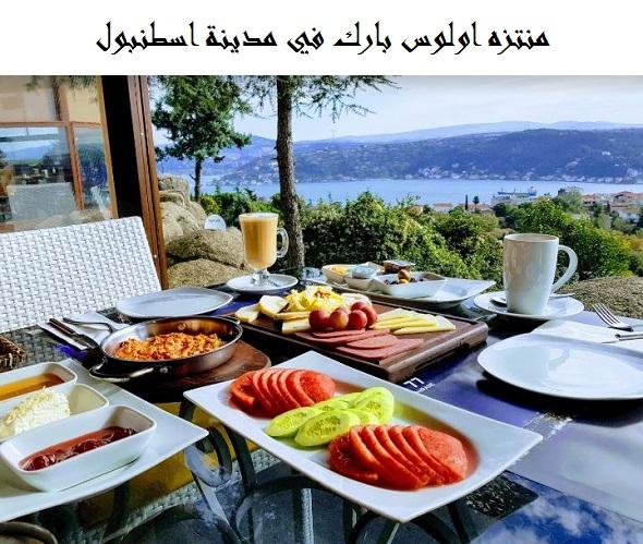 Photo of اولوس بارك اسطنبول | الفعاليات والأنشطة | الفنادق القريبة
