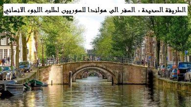 السفر الى هولندا للسوريين