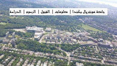 Photo of جامعة مونتريال بكندا | معلومات | القبول | الرسوم | الدراسة