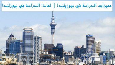 صورة مميزات الدراسة في نيوزيلندا | لماذا الدراسة في نيوزلندا