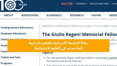 صورة زمالة الجامعة الأمريكية بالقاهرة لدراسة الماجستير في العلوم الاجتماعية