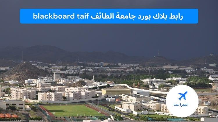 رابط بلاك بورد جامعة الطائف