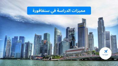 مميزات الدراسة في سنغافورة