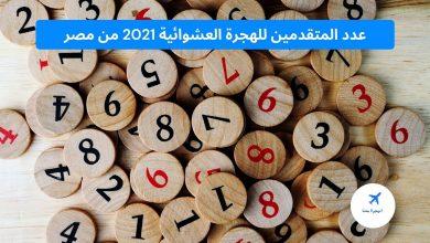 عدد المتقدمين الهجرة العشوائية 2021 من مصر